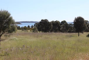 Lot 1 351 Pinta Track Mount Dutton Bay via, Coffin Bay, SA 5607