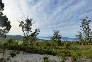 312 Heathy Hill Drive, Saltwater River, Tas 7186
