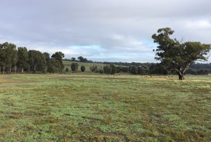 Lot 20, 18 Bush Pea Drive, Seymour, Vic 3660