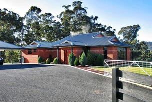41 Roope Rd, Lower Barrington, Tas 7306