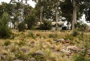 Lot 23, 46 Dolerite Crescent, Flintstone, Arthurs Lake, Tas 7030