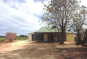 23 Scott Road, Berri, SA 5343