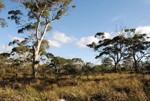 Lot 1 Dolphin Sands Road, Dolphin Sands, Tas 7190