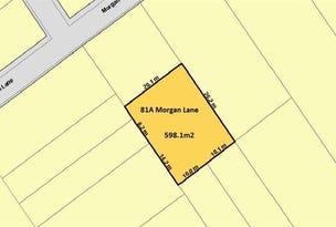 81A Morgan Lane, Broken Hill, NSW 2880