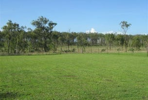 52 Bollons Rd, Bloomsbury, Qld 4799