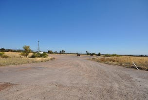 115 Willowie Road, Wilmington, SA 5485