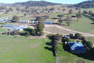 Gooloogong, address available on request