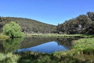591 Yarraford Road, Rangers Valley, NSW 2370