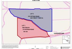 212 Petras Road, Karoonda, SA 5307