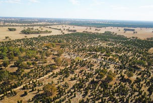 Lot 2 & 45 Munn Brothers Road, Edenhope, Vic 3318