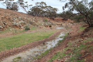 Lot 401 Section 401, North Hills Road, Dutton, SA 5356