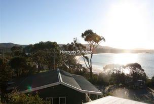 Burgess/Cottage Main Road, Binalong Bay, Tas 7216