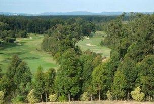 13 Eastern Valley Way (Lot 927), Tallwoods Village, NSW 2430