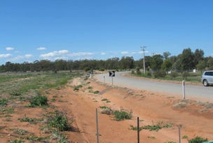9 Driscoll Road, Narrandera, NSW 2700