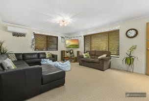 17 Deckle Road, Petrie, Qld 4502