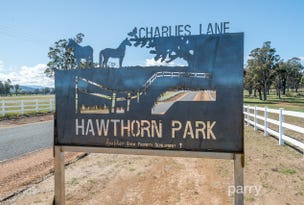 1 - 22 Charlies Lane, Carrick, Tas 7291