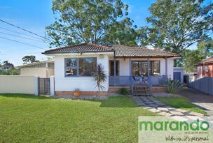 9 Amelia Crescent, Canley Heights, NSW 2166