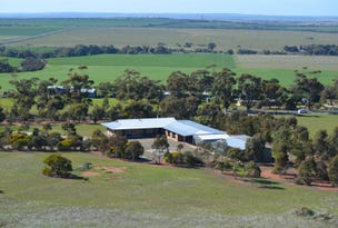 2919 Reedy Creek Road, Palmer, SA 5237
