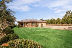 239 Godfrey Hill Road, Rainbow Flat, NSW 2430