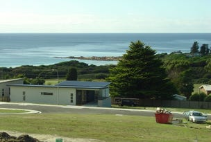 3 Wedge Tail Circuit, Bicheno, Tas 7215