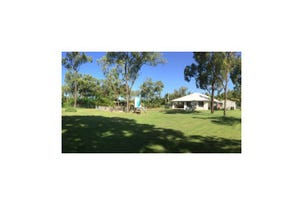 41A Toolakea Beach Road, Bluewater, Qld 4818