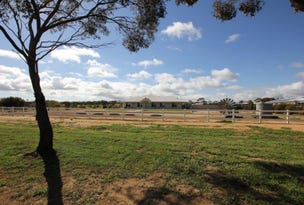 Lot 1338 Whitfield Way, Merredin, WA 6415