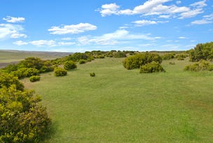 Lot 1 Great Ocean Road, Princetown, Vic 3269