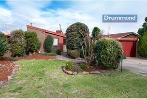 913 Pemberton Street, West Albury, NSW 2640