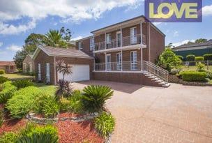 11 Cottonwood Chase, Fletcher, NSW 2287