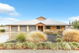 9 Carex Court, Murray Bridge, SA 5253