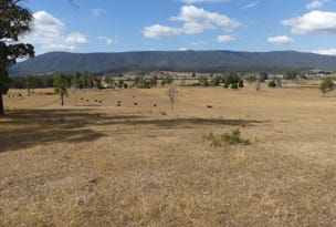 Lot 1 Union Bridge Rd, Mole Creek, Tas 7304