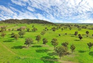 1554 Kelvin Road, Gunnedah, NSW 2380