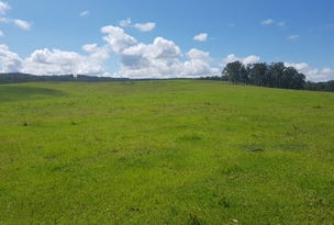Lot 1 Gwydir Highway, Ramornie, NSW 2460