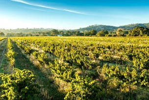 Maverick Wines, 981 Light Pass Road, Vine Vale, SA 5352