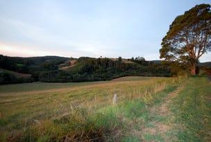 397 Slingsbys Road, Dorrigo, NSW 2453