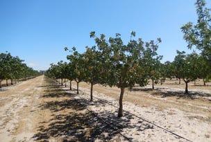 Pistachio Orchard, 1820 Boundary Road, Telopea Downs, Vic 3420