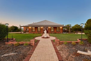 24 Jendarra Court, Swanport, SA 5253