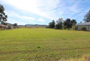 Lot 213 Elderslie Road, Branxton, NSW 2335