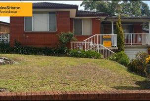 343 Marion St, Bankstown, NSW 2200