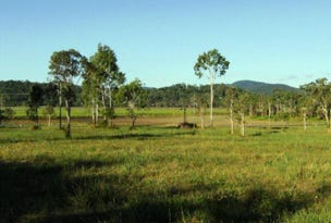 Lot  24 Gregory Cannon Valley Road, Strathdickie, Qld 4800