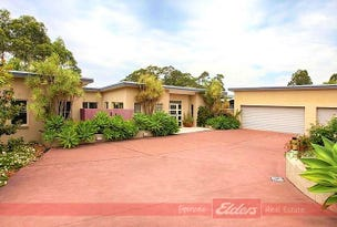 49 Hilltop Parkway, Tallwoods Village, NSW 2430