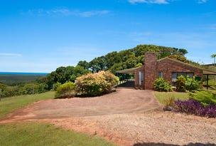 111 Buckombil Mountain Road, Meerschaum Vale, NSW 2477