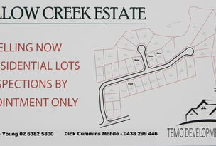 Lot 10 / 63 Templemore Street (Proposed Subdivision), Young, NSW 2594