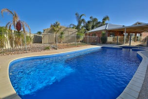 12 Burdekin Court, Red Cliffs, Vic 3496