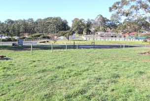 Lot 2 Berrys Creek Road, Mirboo North, Vic 3871