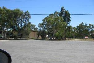 Lot 390 Eneabba Drive, Eneabba, WA 6518