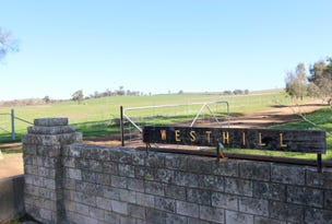 - West Hill, Cootamundra, NSW 2590