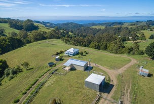 1060 Wild Dog Road, Apollo Bay, Vic 3233