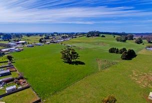 899 Ridgley Highway, Ridgley, Tas 7321