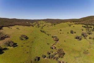 2154 Kangarooby Road, Gooloogong, NSW 2805